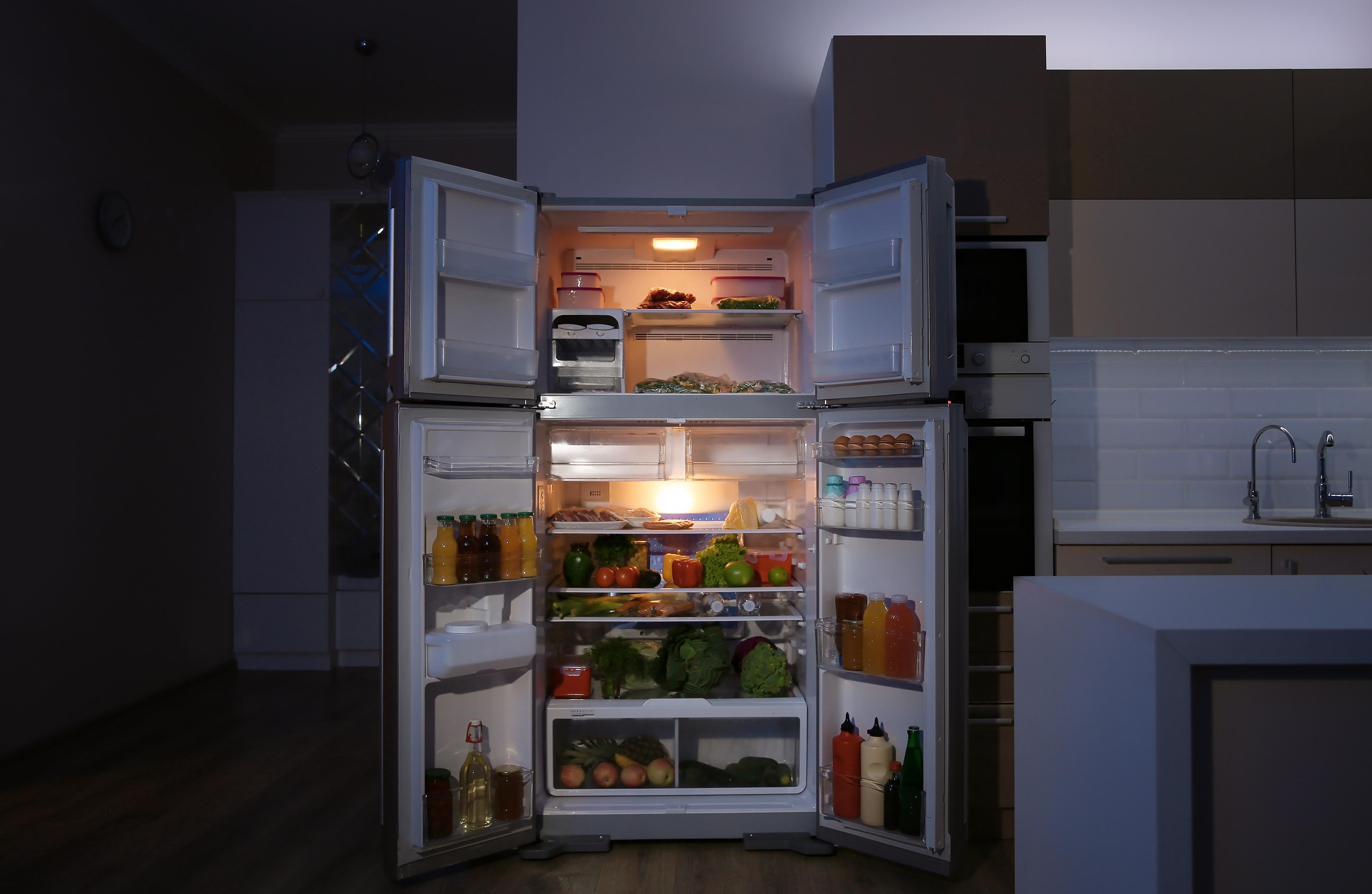 G9 LED koelkast